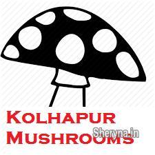 Mushroom Spawn Supplier in Kolhapur, Sangli, Miraj | Other